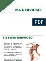 Histologia Del Sistema Nervioso Clase 2