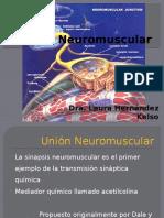 Unión Neuromuscular.pptx