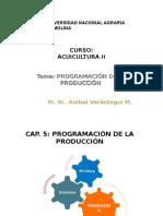 Curso Pregrado-unalm Acui 2 Cap - Prog Prod 2016-II
