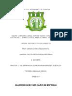 Determinacion de Microorganismos en Vegetales.