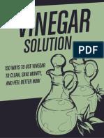 The-Vinegar-Solution.pdf