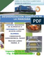Informe 3.Osmodeshidratacion de La Manzana