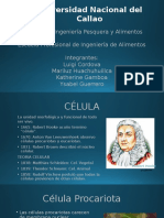 celula procariota y eucariota.pptx