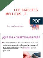 Taller de Diabetes Mellitus Por Paola Ng