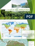 Cuenca Del Amazona