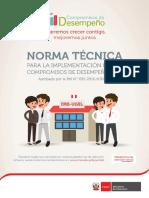 2017 Cdd Norma Tecnica Oficial