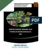 cultura y realidad nacional-informe.pdf