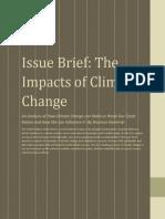 Issue Brief-S.kaminski (1)