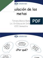 Formulación de las metas.pptx