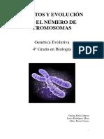 Efectos y Evolucion en el Numerico de Cromosomas