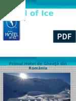 Hotel of Ice Prezentare