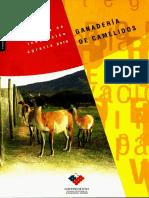 Estrategia de Innovacion Agraria Para Ganaderia de Camelidos
