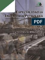 Ingenieria-de-Produccion-y-Productividad-de-Pozos.pdf