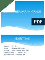 Demam Berdarah Grade II