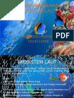 Keanekaragaman Ekosistem Laut
