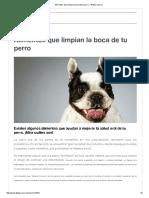 Alimentos Que Limpian La Boca de Tu Perro - 4Patas.com
