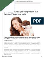 Besos Perrunos_ ¿Qué Significan Sus Lamidos_ Aquí Una Guía - 4Patas.com