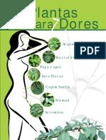 7 Plantas Para 7 Dores