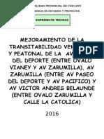 Caratula Expedientes Av Zarumilla