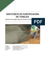 Informe Final Shotcrete
