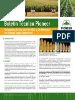 Boletin Pioneer 02