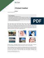 Vektor Raster Dan Format File