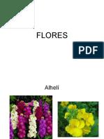 EXAMEN RECONOCIMIENTO FLORES.pdf