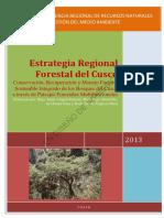 Estrategia Regional Forestal (1).pdf