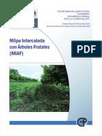 03 MILPA INTERCALADA CON FRUTALES.pdf