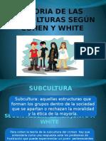 Teoria de Las Subculturas Según