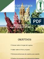 Seminario de Cereales Quinua