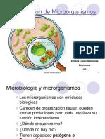 Clase 2 Clasificacion m.o y Bacterias XLG