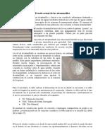 Alcantarilla y postes condición actual.docx