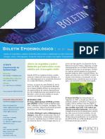 PDF Funcei Boletines 22 (16)
