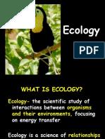 ecology good