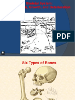 1.3 - Growth Plates and Bone Formation
