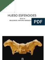 Hueso Esfenoides