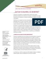 Bursitis and Tendinitis Ff Espanol