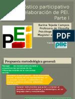 3 Diagnóstico Participativo PEI Parte I