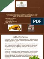 Proyecto _micro (1).pptx