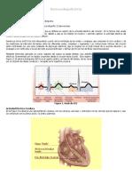 Biomédica - Electrocardiografía (ECG)