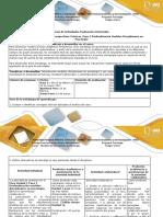 Guia de Actividades y Rúbrica Paso 2 Profundización Modelos Disciplinares