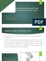 Replikasi DNA Semikonservatif
