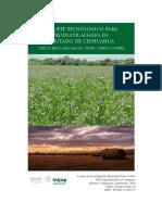 Cultivo Alfalfa