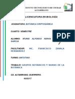 Grupos Botánicos y Ramas de La Botánica.