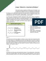 Ácidos Grasos Omega Obtención e Importancia Biológica