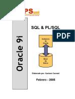 Manual Oracle.pdf