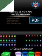 Estudio de Mercado - Macetas Lum