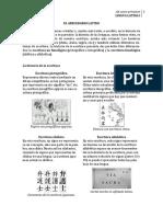 El abecedario latino 2014.pdf