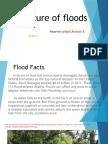 Nature of Floods Rosalyn Pilapil